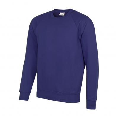 Academy Raglan Sweatshirt In Academy Purple