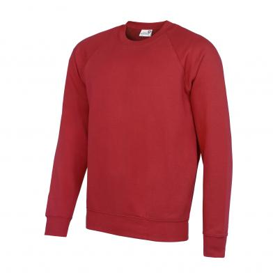 Academy Raglan Sweatshirt In Academy Red