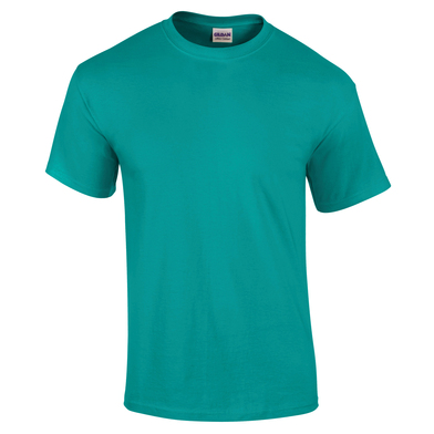 Ultra Cotton Adult T-shirt In Jade Dome