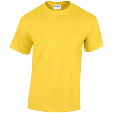 Heavy Cotton Adult T-shirt In Daisy