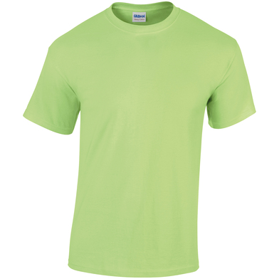 Heavy Cotton Adult T-shirt In Mint