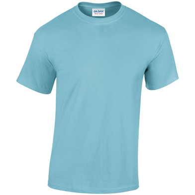 Heavy Cotton Adult T-shirt In Sky