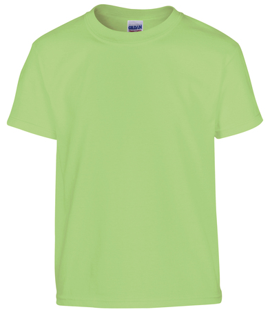 Heavy Cotton Youth T-shirt In Mint Green